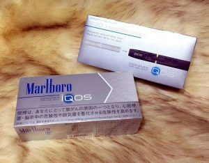 怎么购买iqos烟弹?